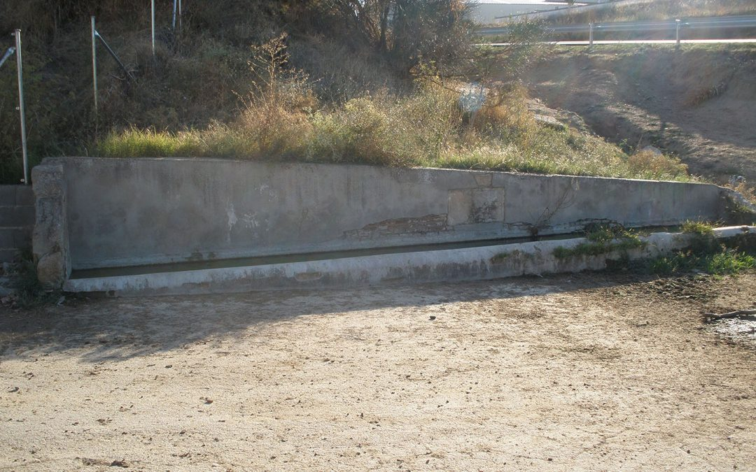 La Cagajona